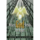 When God Sends an Angel Vasconcelos Xlibris Corporation Paperback. 9781441553027