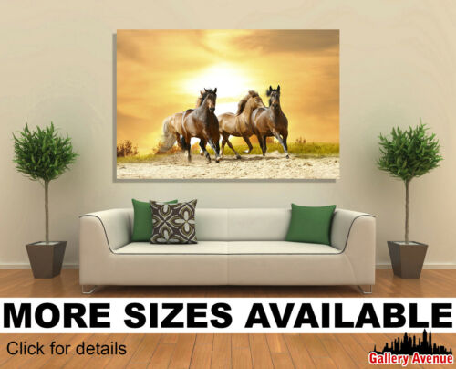 Horses Running in Sunset B015 3.2 Wall Art Canvas Picture Print