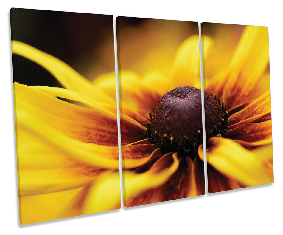 Gelb Floral Flower TREBLE CANVAS Wand Kunst Box Framed Bild