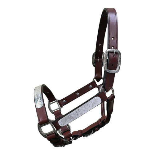 New Western Show Halter Brown Leather With Matching Chain and Lead Pony Cob Full