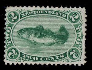 24-Newfoundland-Canada-mint-no-gum