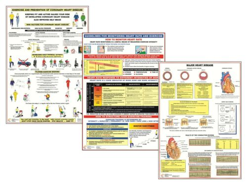 Healthy Heart Exercise Educational Posters Heart Disease Information Charts