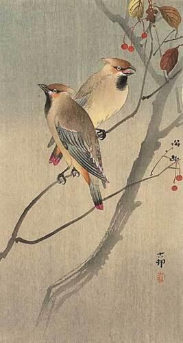 Two Birds in Tree 30x44 Japanese Art Print Ltd. Edition Koson Asian Art Japan
