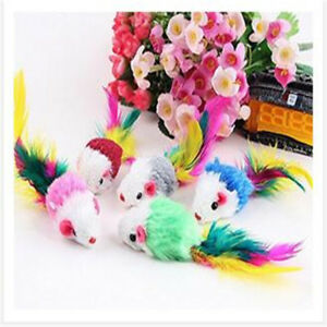 5x-Cat-Kitten-Toys-Rod-Fur-Mice-Bells-Balls-Catnip-with-Feathers-and-Hair