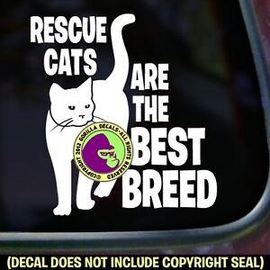 RESCUE-CATS-BEST-BREED-Vinyl-Decal-Sticker-Kitty-Cat-Feline-Car-Window-Wall-Sign