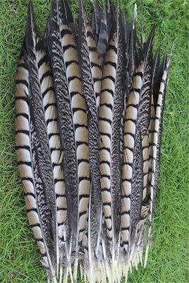 Wholesale 10/20/50/100pcs natural golden pheasant feather 12-14inch/30-35cm