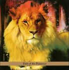 Dub of the Passover * by David Gould (Bass)/Bill Laswell (Bass Guitar) (CD, Mar-2011, Tzadik Records)