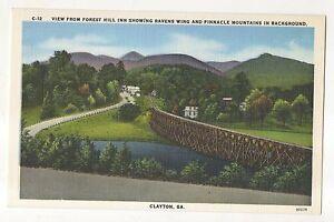 Forest Hill Vintage 27