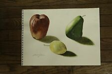 "Original Watercolor by Stuart Jones APPLE, PEAR, LEMON 11x14.5"""