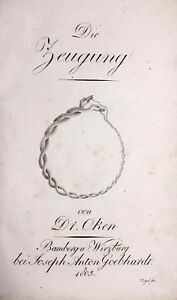Medizin-Geburtskunde-Oken-Lorenz-Die-Zeugung-1805