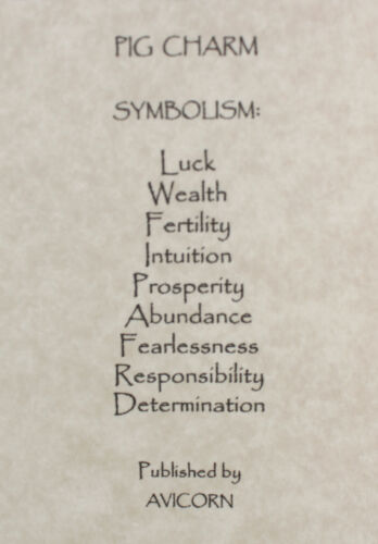 3D PIG TOTEM CHARM Amulet Talisman Symbol Zodiac Sign Farm Animal Magic Luck Hog