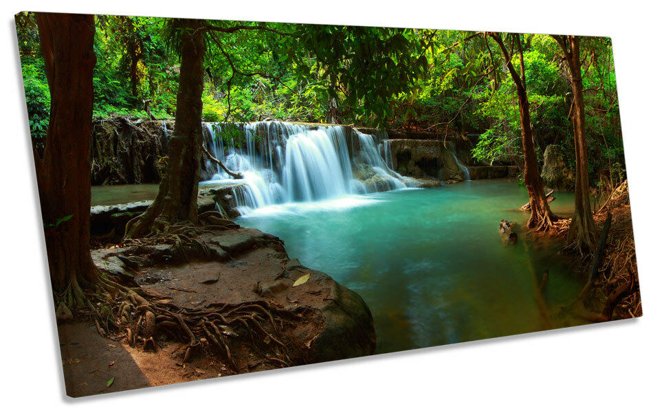 Forest Scene Tropical PANORAMIC CANVAS WALL ART Box Frame