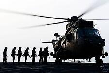 Royal Marines 40 Company 40 Commando Sea King Helicopter 12x8 Inch Reprint Photo