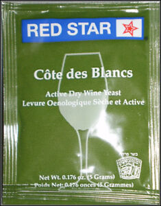 WINE-YEAST-RED-STAR-PASTEUR-BLANC-Fermentis-Champagne-Yeast-1-ea-EXP-DATE-2021