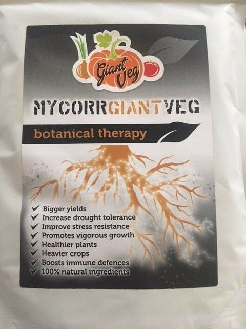 Di micorrizae funghi per verdure GIGANTE-un premio mycorrhizae 1.2kg