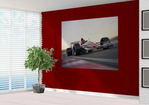 16173923 F1 Race car on the track Wallpaper wall mural wall art Motor sport