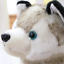 Realistic-Husky-Dog-Plush-Toy-Stuffed-Animal-Soft-Wolf-Pet-Doll-Cute-Kid-Gift-7 thumbnail 4