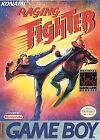 Raging Fighter (Nintendo Game Boy, 1993)