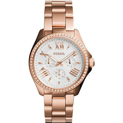 Fossil Cecile Analog Silver Dial Women's Watch - AM4630