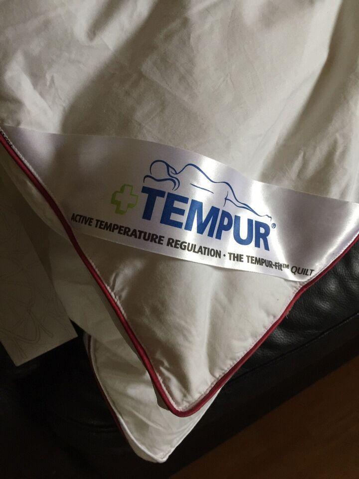 Dyne, Temprakon - Tempur