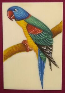 Hand-Painted-Parrot-Fine-Birds-Miniature-Painting-India-Art-Synthetic-Ivory