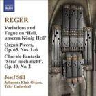 Reger: Organ Works, Vol. 9 (CD, Jun-2009, Naxos (Distributor))