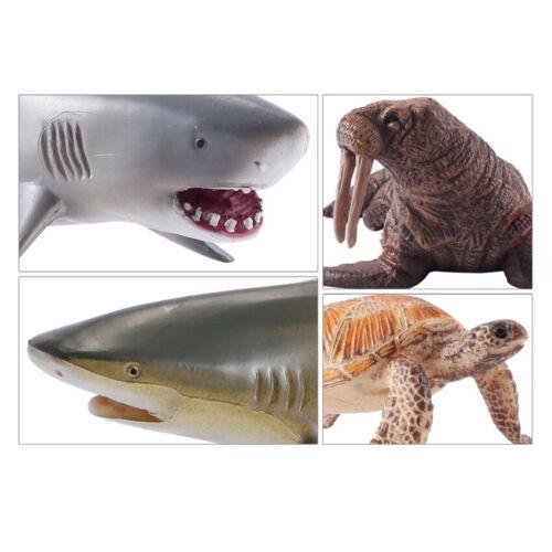 Modelo de simulación Animal Marino océano mar tortuga tiburón /& Figuras De Acción De Juguete