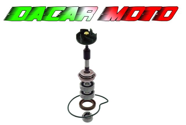 Kit de Revisión Bomba de Agua Piaggio beverly Tourer 300 2009/2010 RMS