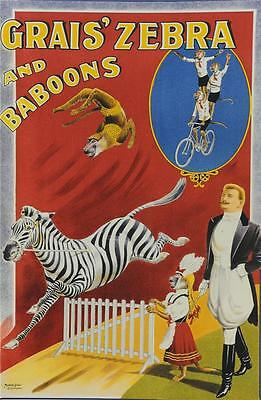 Grais Zebras and Baboons Poster Fine Art Lithograph Albert Whitfield Re Society