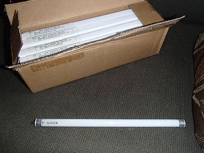 *NEW* BOX OF 25 HG F8T5//CW COOL WHITE FLUORESCENT BI PIN LIGHT BULBS