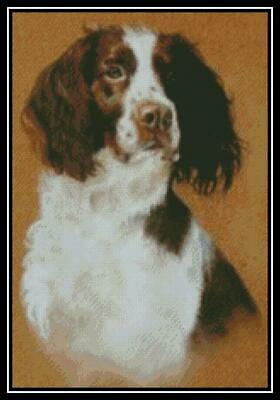 English Springer Spaniel Cross Stitch Chart//Pattern//Design//XStitch