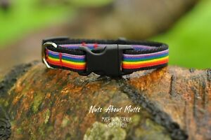 Rainbow-LGBT-Gay-Pride-puppy-cat-collar-3-sizes-free-shipping