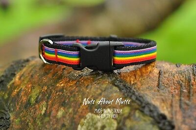 Rainbow LGBT Gay Pride puppy small dog teacup narrow width 15mm  FREE SHIPPING!