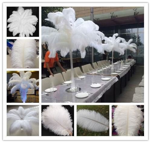Wholesale 100pcs White High Quality Natural OSTRICH FEATHERS 6-28inch //15-70cm