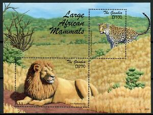 Gambie-2018-neuf-sans-charniere-Large-African-Mammals-Lions-leopards-1-V-S-S-animaux-sauvages