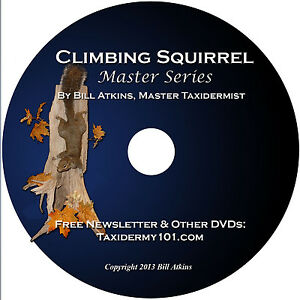 Learn-Squirrel-Taxidermy-Training-on-DVD-for-Beginners-NEW