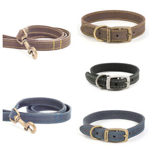 Ancol-quality-bridle-leather-dog-collar-lead-Blue-Brown-Grey-Tan-new-XS-S-M-L