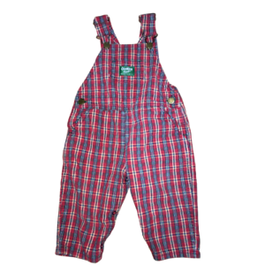 New OshKosh Boys Overalls Vestbak Pants Green w Pin Stripe Lining 12 18 24 2 3 4