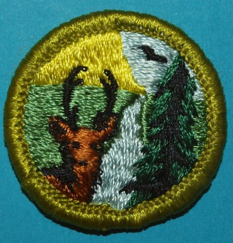 X322 CONSERVATION OF NATURAL RESOURCES TYPE G MERIT BADGE  GREEN BORDER