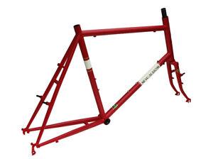 Mini-Velo-Nuovo-Albion-Microbrew-Bicicletta-Grande-55cm-Soma-Tange-Champion