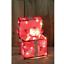 Luce-Up-Movimento-Animato-Babbo-Natale-Pupazzo-di-Neve-Decorazione-Interno-Led miniatura 3