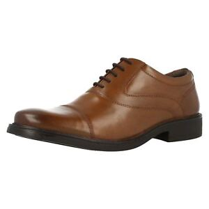 Detalles de Hush puppies Rockford Oxford Piel Marrón para Hombre Zapatos con Cordones (R17A)
