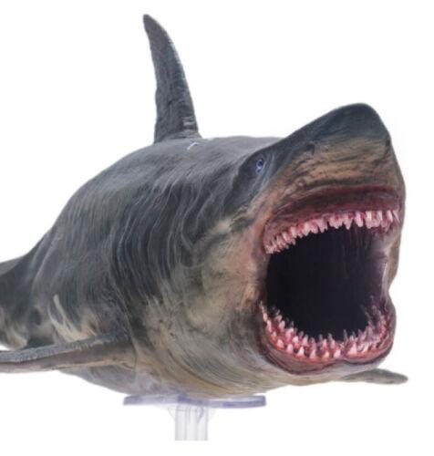 PNSO 1//35 Megalodon Figure Rare Ocean Animal Model Toy Collector Decor Kid Gift