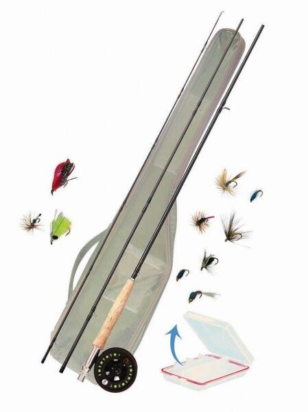 Paladin Concept volare Combo 6  7