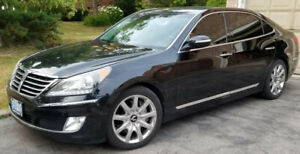 2013 Hyundai Equus Signature, Navigation, FREE OF ACCIDENTS