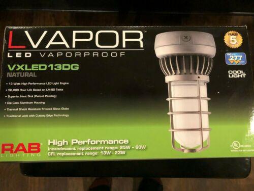 RAB LED Vaperproof Light Fixture VXLED13DG
