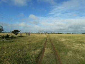 Precioso Rancho de 204 has a 63 km de Tizimin Para Ganado o Cultivo