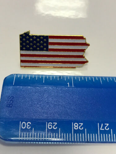 Pennsylvania State Lapel Pin PA US Flag American USA Patriot Politics