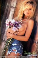 Pamela Anderson 23x35 Hot Pants Flowers Poster 1999 Short Shorts