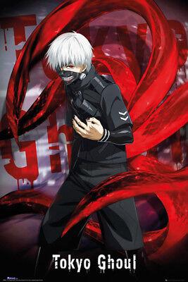 Anime  Tokyo Ghoul Ken Kaneki Silk Poster 24 X 14 inch Wallpaper